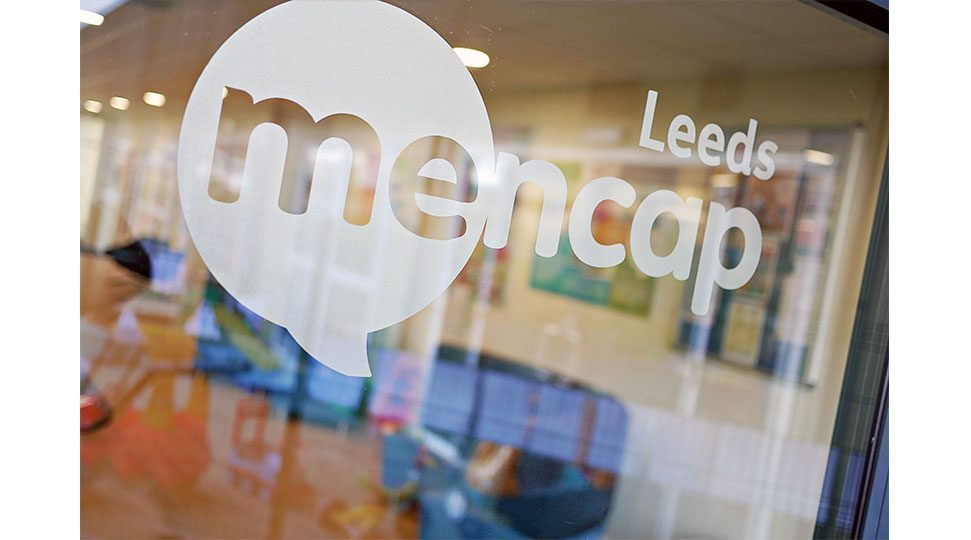 MenCap Office Window Graphics