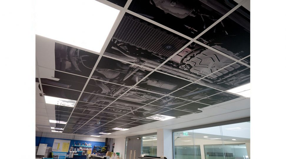 ceiling-graphics
